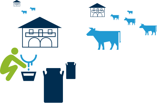Kaiku Km0-vacas mesa-1